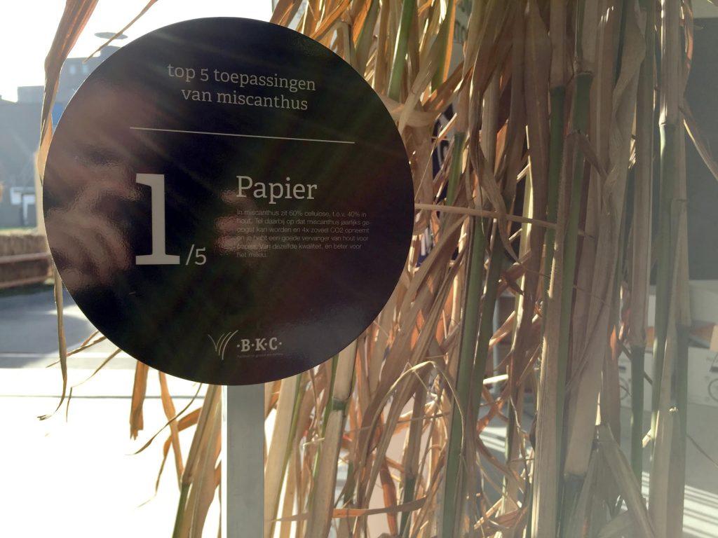 BKC Innovate miscanthus papier